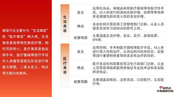 2019年度美容行业网络关注度分析报告